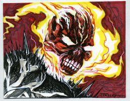 Ghost Rider 3x5 by TomKellyART