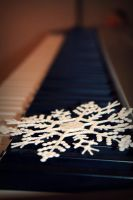 Snowflakes fall in the winter by photoartbyshannon