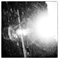 A Light Will Shine at dOCUMENTA 13 14 by HorstSchmier