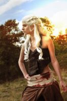 With Fire and Blood by katyuna