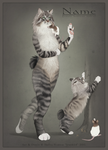 Cat Character AUCTION on FA - OVER by HannasArtStudio