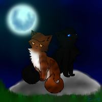 Crowfeather and Leafpool by xXCrystalwingXx