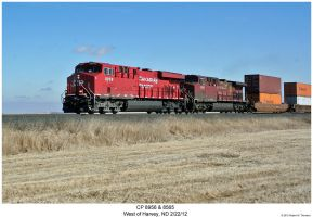 CP 8956 + 8565 by hunter1828