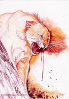 Wild anger by ChristinaMandy