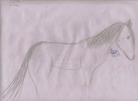 Horse Body by herestofakefriends