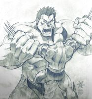 Wolverine Vs Hulk by Mundokk