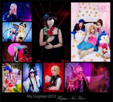 Happy New Year:::My cosplays in 2013 by Witchiko