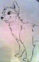 Wolf:3 by Isabela1
