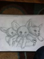 3 Fennec Foxes (D'aww!) by Dracosia