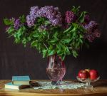 still life 4 by Demissione