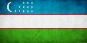 Uzbekistan Flag Grunge by think0