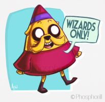 Wizards ONLY! by Dapper-Rabbit