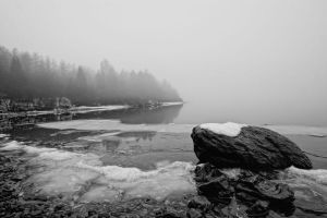 Misty morning by CharmingPhotography