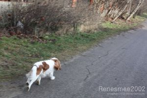 Running Jenny by Renesmee2002
