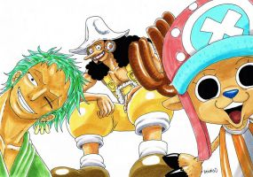 Zoro, Usopp and Chopper by heivais