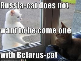 Belarus-cat and Russia-cat by Canadianwannabe1