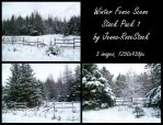 Winter Fence Scene Pack 1 by Jenna-RoseStock