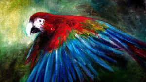 The Macaw by JonathanChanutomo