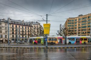 Geneva city - multicolored transportation by Rikitza