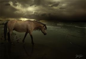 a solemn farewell by indecision-designs