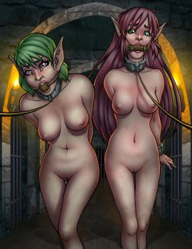 Elves in the Dungeon... by SneakAttack1221