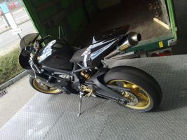 Triumph 675 by Someone-18