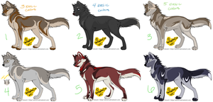 Wolf Adoptables 17 by WolfAdoptionClub
