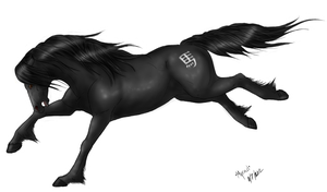 Black horse- team horse by Myrad