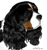 My Cavalier King Charles Ut-Ke by saeko-doyle