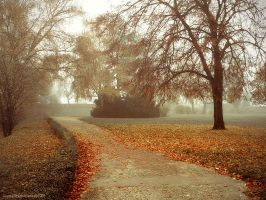 misty autumn morning II by JoannaRzeznikowska
