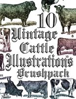 10 Vintage Cattle Illustrations Brushpack by TinyTumbler