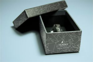 corporate gift yearny (temporal cristal) by LauraNC