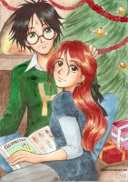 Christmas Harry and Ginny by Alkanet