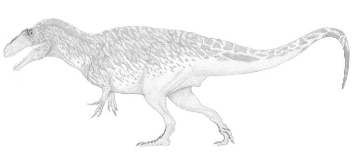 A Well-Muscled Acrocanthosaur by pilsator