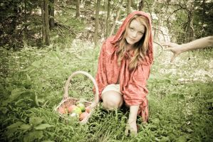 Little Red Riding Hood 12 by angelsfalldown1