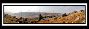 Israel Landscape-Panorama by lehPhotography