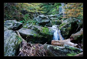 Mid Falls in Fall by FoxMcCarther