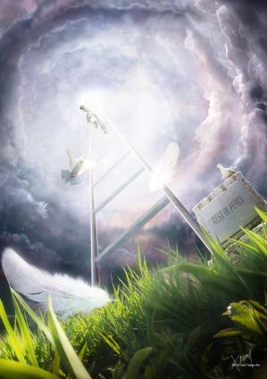 Ladder to Heaven by Cold-Tommy-Gin