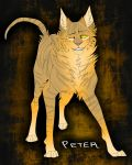 Peter by DoctorCritical