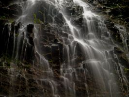 Not so lonely at Lone Falls by Millsy1