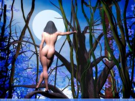 Moon watching from tree tops by rlcwallpapers