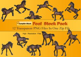 Foal PNG Stock Pack by Roys-Art