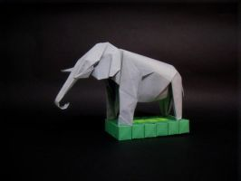 Elephant by akannel