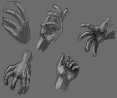 Hands - study by Anevis