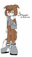 Brownie The Border Collie  by Jc-the-penguin