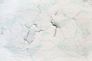 Old flaking wallpaper with mint pattern by mercurycode