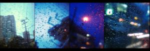 A Softer World by behindinfinity