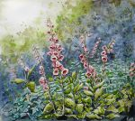 digitalis purpurea by daroitelisabetta