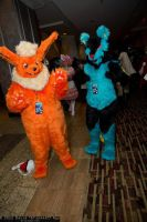 Flareon and Luxray at Momo Con 2013! by Requiem-Owl