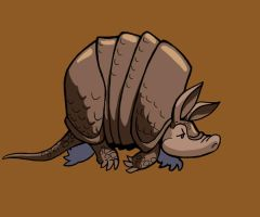 Armadillo by motterhorn